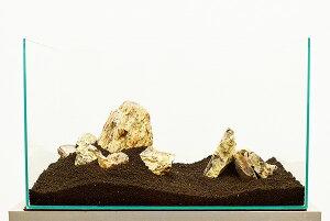 カミハタ アクアリウムロック レイアウトセット 木化石 45〜75cm水槽用・天然石セット 【水槽との同梱は不可】