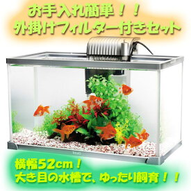 テトラ アクアリウム セット AG−52GF お手入れ簡単!!外掛けフィルター付きセット