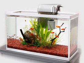 テトラ ホワイトアクアリウム スリム520 52cm観賞魚飼育セット