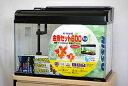 ニッソー 60cmガラス水槽 観賞魚飼育5点セット 60Hz(西日本)仕様