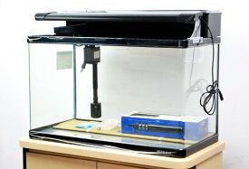 【送料無料】 ニッソー スティングレー600 LED熱帯魚セット 60cm曲げガラス水槽・熱帯魚飼育セット 【北海道・沖縄・離島、別途送料】