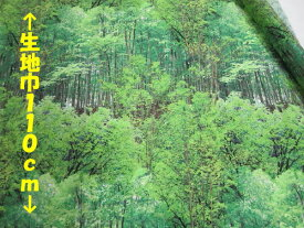 リアルプリント フォレスト【メール便3m可】森林 生地 布地 ぬの コットン 綿 プリント生地