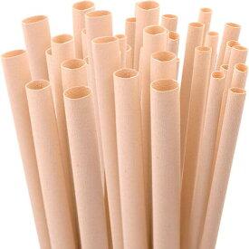 【エコ】【ナチュラル】竹繊維ストロー<お試しパック> タピオカサイズ(12mm×100本)【新素材】