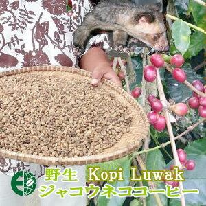 【送料無料】ジャコウネココーヒー コピ・ルワック コピルアク (豆/粉) 100g【インドネシア スマトラ島】野生ルワックから天然の贈り物