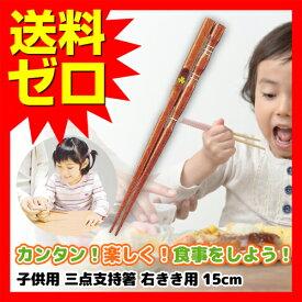 箸 子供 用 15cm 箸 子供用 イシダ 子供用矯正箸 三点支持箸 右利き用 【 即日出荷 】 はし ハシ トレーニング