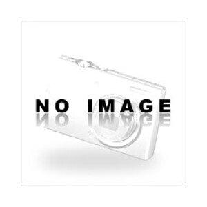 レイメイ藤井 ACJ380 カッティング定規30cm ※商品は1点 ( 個 ) の価格になります。