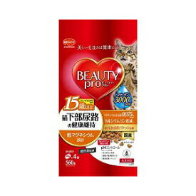 ビューティープロ キャット 下部尿路の健康維持 15歳以上 フィッシュ味 560g フード 猫 ネコ ねこ キャット cat ニャンちゃん ※商品は1点 ( 個 ) の価格になります。