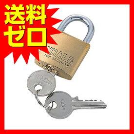 サンワサプライ eセキュリティ ( 南京錠大No.1 ) SLE-1L-1N おまとめセット 【 6個 】 【 あす楽 】