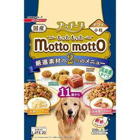 プッチーヌ mottomotto ドライ 11歳から 高栄養タイプ8 40g 犬用 犬フード 日清ペットフード(株)