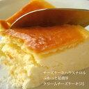 チーズケーキハウスチロルのふわっと超濃厚 クリームチーズケーキ5号