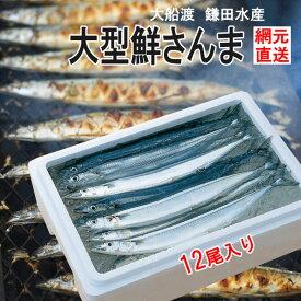 産地直送 三陸生サンマ 鎌田水産 大型鮮さんま 12尾 k15