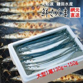 三陸生サンマ 鎌田水産 鮮さんま 130g〜150g 12尾 k15