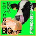 【ミネラルたっぷり】家畜用ヒマラヤ岩塩5〜7kg【牛・馬・羊・ペット】【アニマルソルト】【特大】【お徳用サイズ】【ペット塩分補給】【動物】【熱中症対策】