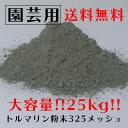 Toru325