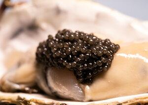 高級食材魚の卵ドイツ産キャビアcaviarフレッシュオショートルキャビア50g