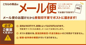 食洗機対応かわいい乗り物のお箸電車/自動車18cmお子様向(子供/ベビー)/日本製/メール便発送可能