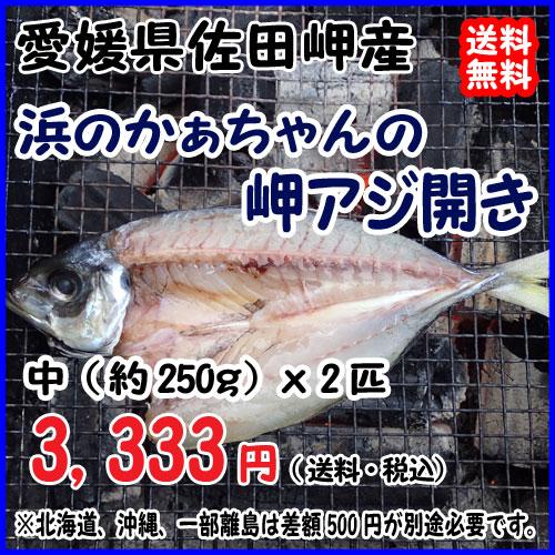 愛媛 佐田岬産 天然一本釣り 【 浜のかぁちゃんの 岬アジ開き 】中型(約250gx2匹) 冷凍