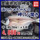 愛媛 佐田岬産 天然一本釣り 【 浜のかぁちゃんの 岬アジ開き 】中型(約250gx5匹) 冷凍