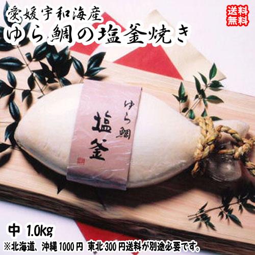 愛媛 ( 鯛の塩釜焼 ) 魚体約40cm1kg お祝 お食い初め 慶事 送料無料 浜から直送 宇和海の幸問屋