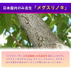 월 귤 나무속 및 루 테 인 다양 한 문제를 철저히 지원 루 테 인/メグスリノキ 「 1620 엔 이상 구입에서 」