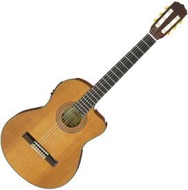ARIA アリア A-35CE クラシックギター エレガット【送料無料】【新品】