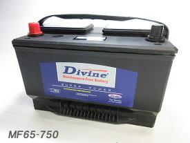 MF65-750【新品・充電済み】 Divineバッテリー ◆ マーキュリー クーガー グランドマーキー セーブル
