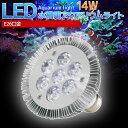 【送料無料】E26口金 14W 珊瑚 植物育成 水草用 水槽用 LED アクアリウムスポットライト 青7灯