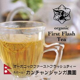 オーガニックネパールファーストフラッシュティー 100グラム SFTGFOP 紅茶 最上位等級