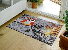 玄関マット Amalia 50x75cm (屋外・屋内兼用)
