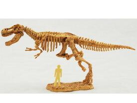 恐竜発掘キット【ティラノサウルス】