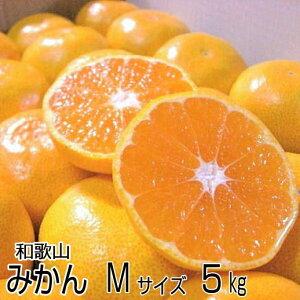 【送料無料】和歌山産 高糖度温州みかん Mサイズ 5kg(約50個)濃厚な味のとろける美味しさ!