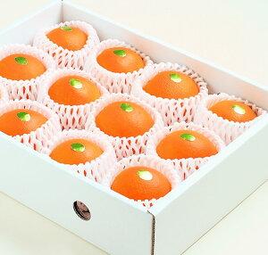 """【送料無料】和歌山産 高級ネーブルオレンジ""""果物の王様""""約2.8kg(11〜12玉) 化粧箱入り"""