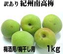 【訳あり】本場和歌山産 青梅≪南高梅≫1kg【梅酒用/梅干し用】