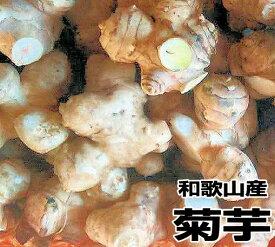 【送料無料】菊芋(キクイモ)生 3kg 土付き 和歌山産【無農薬】テレビで話題のスーパーフード