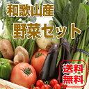 【送料無料】和歌山産 旬の野菜詰め合わせセット 13種以上 【野菜セット】