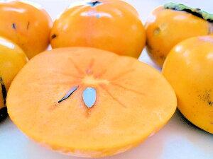 【送料無料】カリッと美味しい次郎柿 【訳あり/家庭用】3kg 和歌山産/愛知産