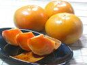 【送料無料】和歌山産 柿の王様 富有柿 Lサイズ15個(3kg)