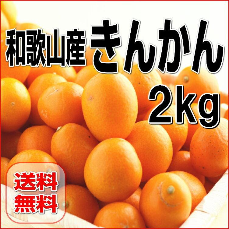 【送料無料】和歌山産 金柑/きんかん 2Kg【訳あり・家庭用】