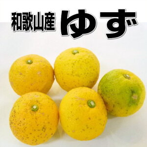 国産 柚子(ゆず)訳あり 1kg 和歌山産【本ゆず・花ゆず】