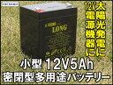 LONG 12V5Ah 高性能シールドバッテリー(完全密閉型鉛蓄電池) WP5-12 UPSにも! 05P03Dec16