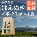 令和2年産 いいあん米 はえぬき 玄米 30kg 山形 庄内