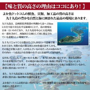 長崎産天然活サザエ4