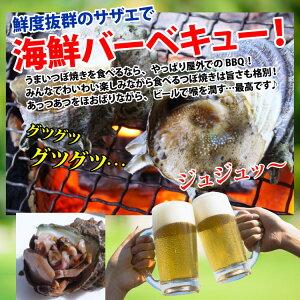 長崎産天然活サザエ10