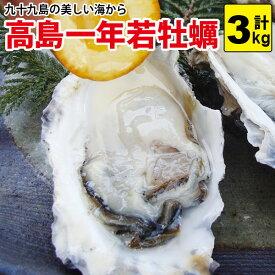 送料無料!高島一年若牡蠣(カキ) 3kg(30個前後)身のギュッと引き締まった濃厚なかき!九十九島 牡蠣 かき 殻付き 生食用 [貝類セール]
