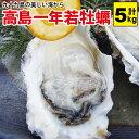 ギフト 送料無料 高島一年若牡蠣(カキ) 5kg(50個前後)身のギュッと引き締まった濃厚なカキ!『送料無料』かき 九十九…