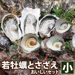 ギフト 高島の一年若牡蠣(カキ)天然活サザエ おいしいセット(小)九十九島 牡蠣 殻付き 生かき 生食用 冬ギフト