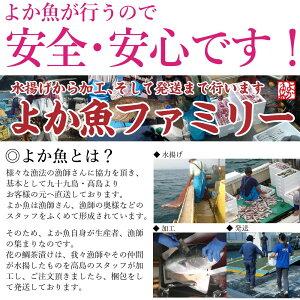 九十九島鯛茶漬け『花の鯛茶漬け』2食入り(マダイ)(真鯛)8