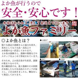 長崎よか魚花の鯛茶漬け鯛茶漬け活かし真鯛10