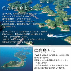 長崎よか魚花の鯛茶漬け鯛茶漬け活かし真鯛11