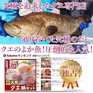 長崎よか魚花の鯛茶漬け鯛茶漬け活かし真鯛4